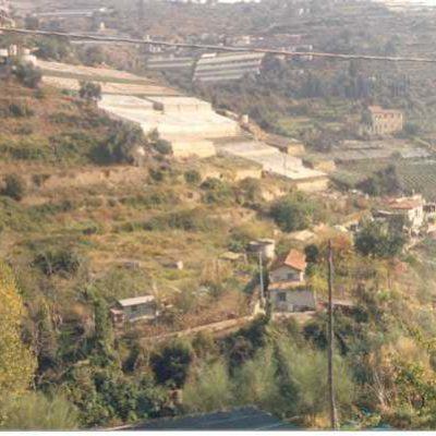 Foto 1 - panoramica