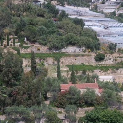 Foto 1-panoramica